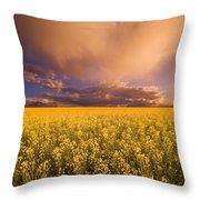 Sunset On A Canola Field Throw Pillow