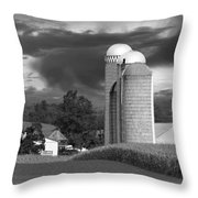 Sunset On The Farm Bw Throw Pillow by David Dehner
