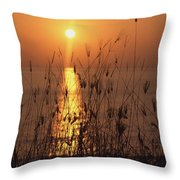 Sunset Over Pacific Throw Pillow