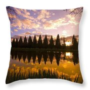 Sunset Reflection In A Park Pond Throw Pillow by Craig Tuttle