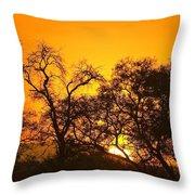 Sunset, Sabi Sand Reserve, Mpumalanga Throw Pillow