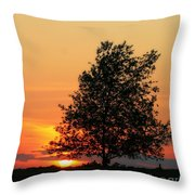Square Photograph Of A Fiery Orange Sunset And Tree Silhouette Throw Pillow