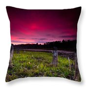 Sunset Stumps Throw Pillow
