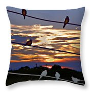 Sunsets And Birds Throw Pillow