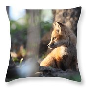 Sunsetting On Youth Throw Pillow
