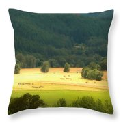 Sunshine In The Valley Throw Pillow