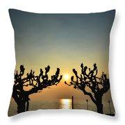 Sunshine Over A Lake Throw Pillow