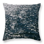 Sunshine Sparkling On Lake Erie Throw Pillow