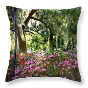Sunshine Through Savannah Park Trees Throw Pillow