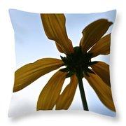 Sunstar Throw Pillow