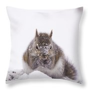 Suppers Cold Throw Pillow