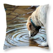 Sure Is Good On A Hot Day Throw Pillow