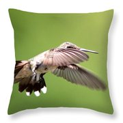 Sure Shy Throw Pillow
