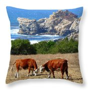 Surf And Turf Two Throw Pillow by Jeff Lowe