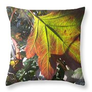 Surrender Throw Pillow by Trish Hale