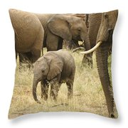 Surrounded By Family Throw Pillow