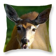 Survival Of Innocence Throw Pillow