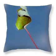 Suspended In Air Throw Pillow