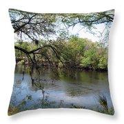 Suwannee River Throw Pillow