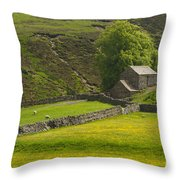 Swaledale Throw Pillow