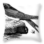 Swallow, C1800 Throw Pillow