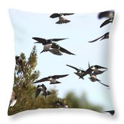 Swallows - All In The Family Throw Pillow