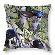 Swallows In Pooler Throw Pillow