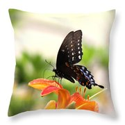 Swallowtail - Lite And Lively Throw Pillow