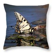 Swallowtail - Walking On Water Throw Pillow