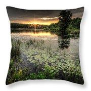 Swamp Sunrise Throw Pillow