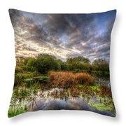 Swampy Throw Pillow