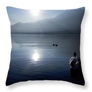 Swan And Ducks Throw Pillow