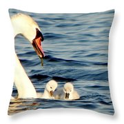 Swan And Signets On Wall Lake  Throw Pillow