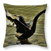 Swan Dance 2 Throw Pillow