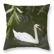 Swan Enjoying A Swim Throw Pillow