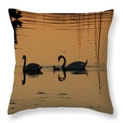 Swan Family At Sunset Throw Pillow by Camilla Brattemark