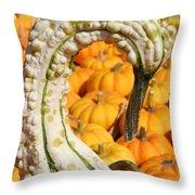 Swan Gourd Throw Pillow