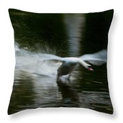 Swan In Motion Throw Pillow