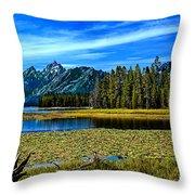 Swan Lake II Throw Pillow