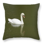 Swan Looking At Reflection Throw Pillow
