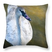 Swan On Evergreen Lake Throw Pillow