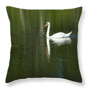 Swan On Wintergreen Lake Throw Pillow