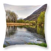 Swan Swimming On A Lake Throw Pillow