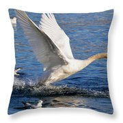 Swan Take Off Throw Pillow