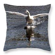 Swan Touches Down Throw Pillow