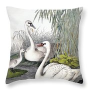 Swans, C1850 Throw Pillow