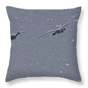Swans Coming In For A Landing, Tagish Throw Pillow