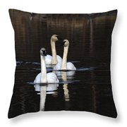 Swans In A Row Throw Pillow