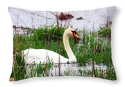 Swan's Marsh Throw Pillow