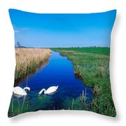 Swans On Bog, Near Newcastle, Co Throw Pillow